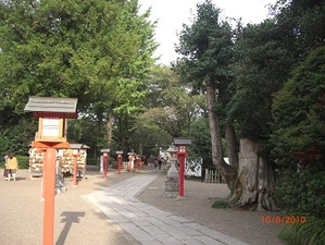 Wasi5_2