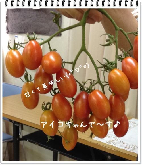 20140808_121934_2