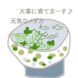 Cocolog_oekaki_2010_09_10_11_48